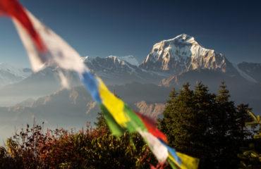 Bhuddism flags with Dhaulagiri peak in background, Nepal_775766710