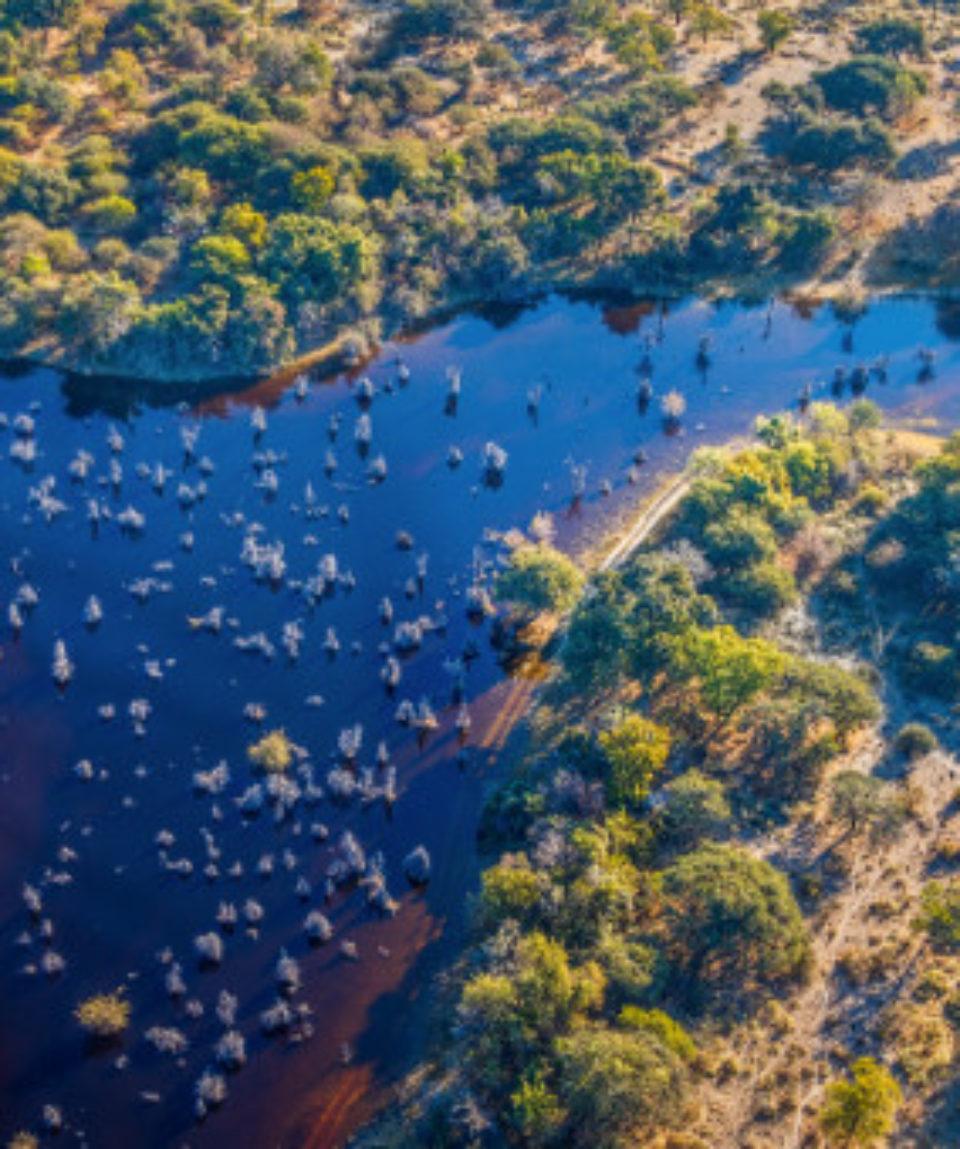 FEATURED IMAGE Botswana Okavango delta _425957404